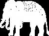 Thai Erawan White Elephant Organic Women's Fitted