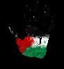 Palestine News Shop