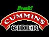 Fresh Cummins Cider Women's Plus Size V-Neck Dark