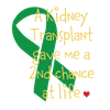 2nd Chance At Life (Kidney)