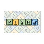 Pisher Elements Rectangle Car Magnet