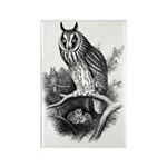 Long-eared Owl Sketch Rectangle Magnet