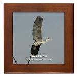 Grey Heron Framed Tile