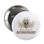 Forensic Anthropology Skull 2.25