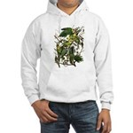 Audubon's Carolina Parakeet Hooded Sweatshirt