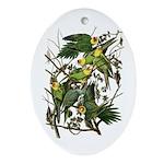 Audubon's Carolina Parakeet Oval Ornament