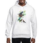 Grosbeaks & Buntings Hooded Sweatshirt