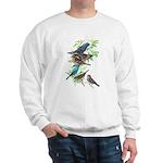 Grosbeaks & Buntings Sweatshirt