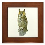 Fuertes' Great Horned Owl Framed Tile