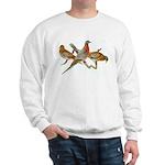 Fuertes' Passenger Pigeon Sweatshirt