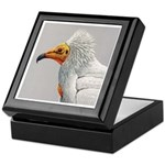Fuertes' Egyptian Vulture Keepsake Box