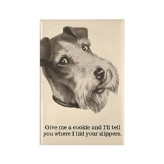 Funny Dog Fridge Fridge Magnet
