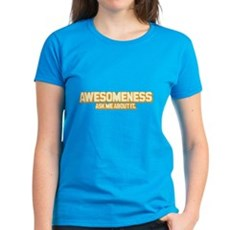 Awesomeness Womens T-Shirt