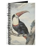 Schouman's White-throated Toucan Journal