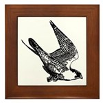 Peregrine Sketch Framed Tile