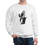 American Kestrel Sketch Sweatshirt