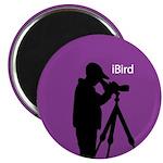 iBird (purple) Magnet