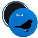 iBand (blue) Magnet