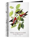 White-winged Crossbill Journal
