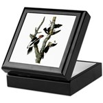 Ivory-billed Woodpecker Keepsake Box