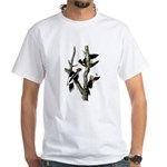 Ivory-billed Woodpecker White T-Shirt