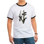 Ivory-billed Woodpecker Ringer T