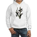 Ivory-billed Woodpecker Hooded Sweatshirt