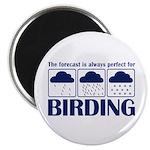 Forecast for Birding Magnet