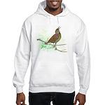 Fuertes' Meadowlark Hooded Sweatshirt