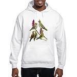 Fuertes' Waxwings Hooded Sweatshirt