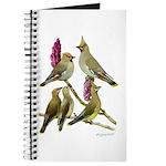 Fuertes' Waxwings Journal