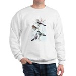 Fuertes' Shrikes Sweatshirt