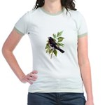 Rose-breasted Grosbeak Jr. Ringer T-Shirt